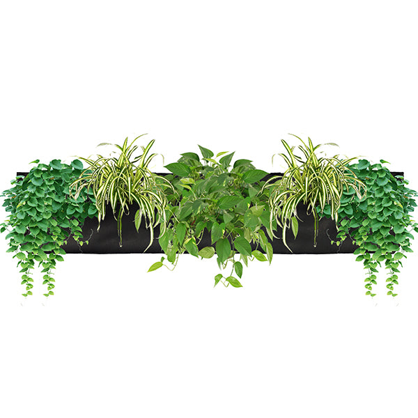 Wally Pro 3 Black Vertical Garden Planter Pocket Planted