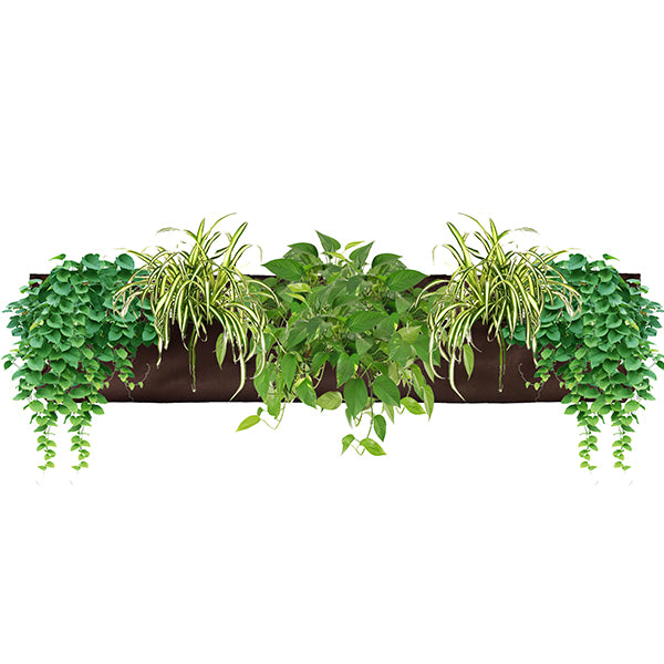 Wally Pro 3 Chocolate Vertical Garden Living Wall Planter Pocket Planted
