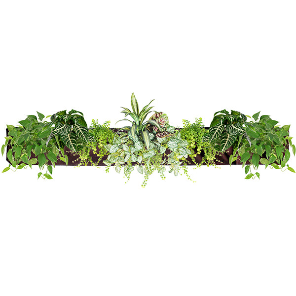 Wally Pro 5 Chocolate Vertical Garden Living Wall Planter Pocket Planted