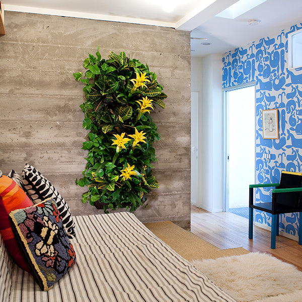 Wally Pro 1 Living Wall Planter Installation Example 2