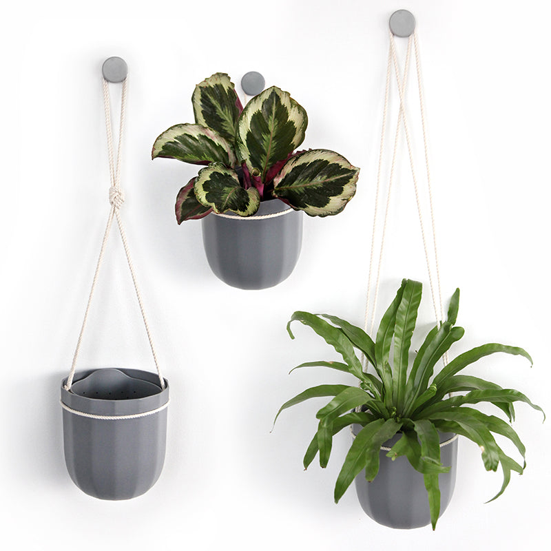 Loop Hanging Planter in Gravel