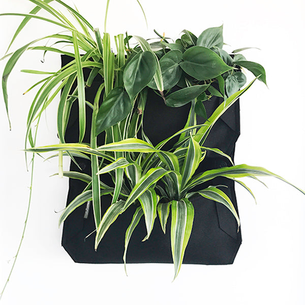 Wally Pro Jr 1 Pocket Vertical Garden Planter 2 pack with Straps Planted