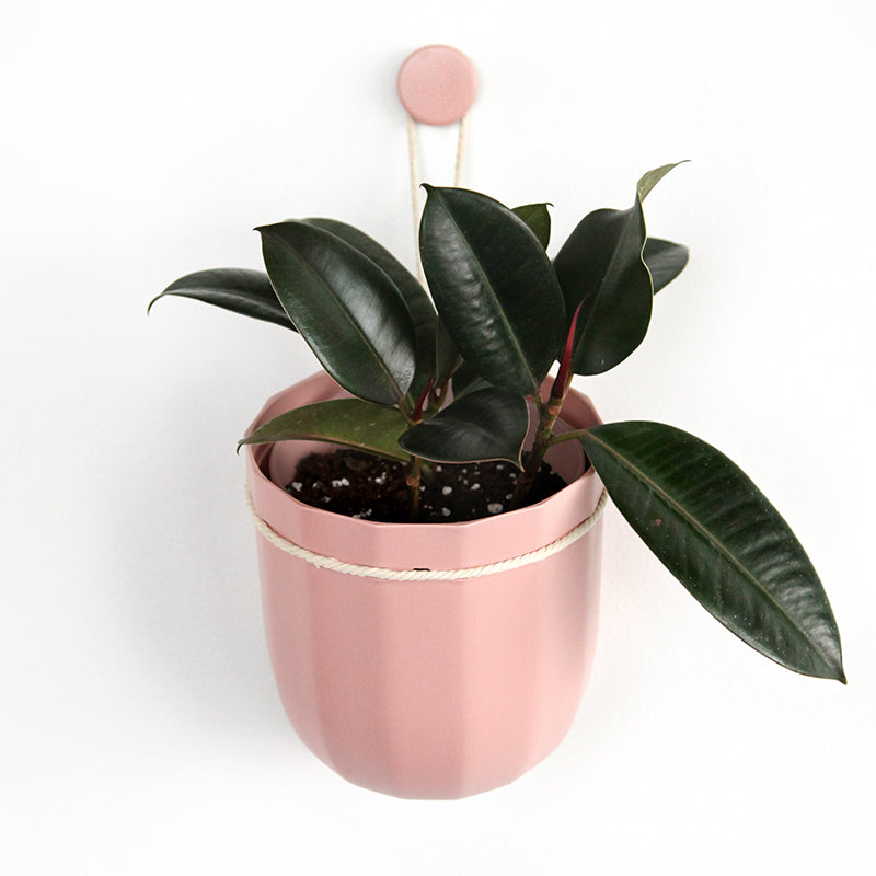 Loop Hanging Planter in Rose