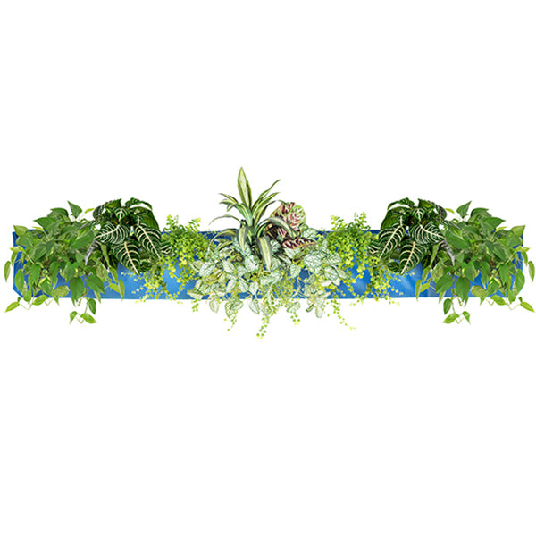 Wally Pro 5 Peacock Vertical Garden Living Wall Planter Pocket Planted