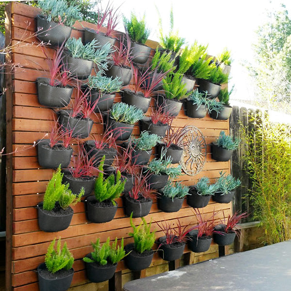 Wally Eco Charcoal Vertical Garden in use