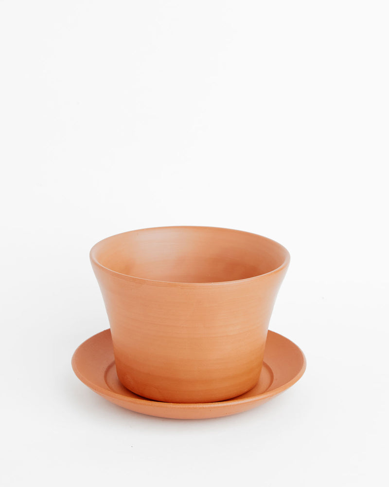 Cassia: Soft-as-Silk Terracotta Pot
