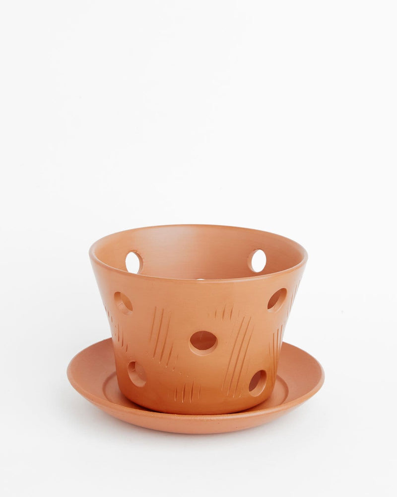 "Orchid Pot With Holes: Cassia Soft-as-Silk Terracotta 3.5""H x 4.5""D"