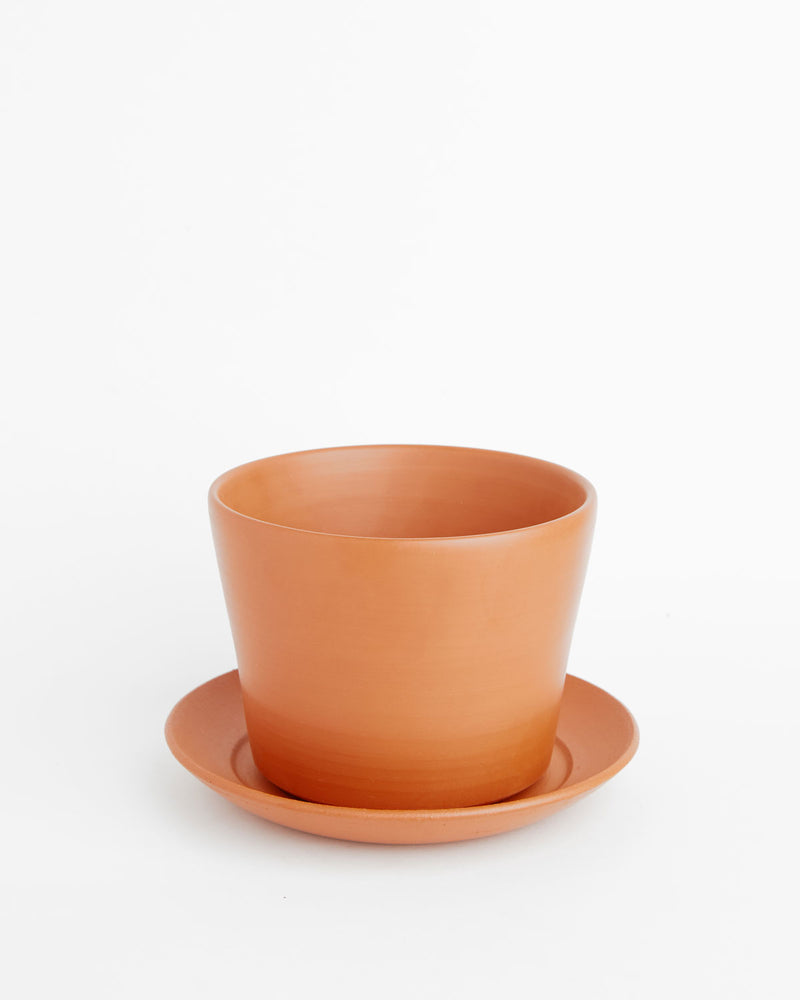 "Clove: Soft-as-Silk Terracotta Pot 3.5: H x 4.5""D Top"