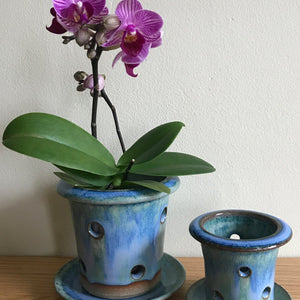 "Orchid Pot With Holes: Oak Monet 3.75: H x 4.75""D"