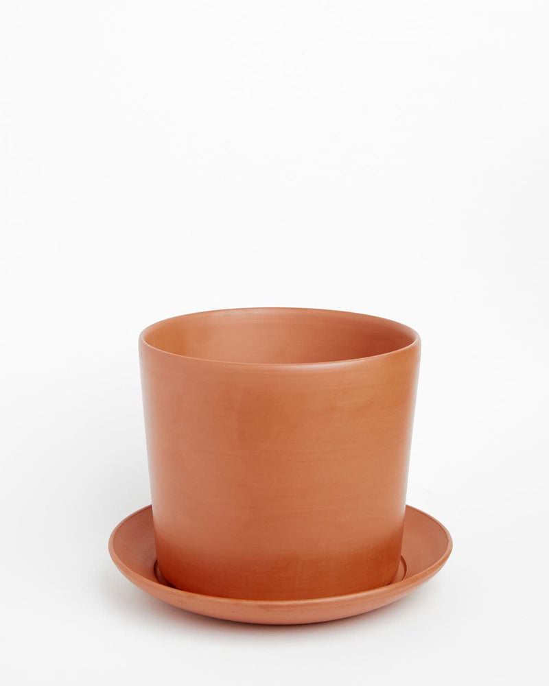 Reed: Soft-as-Silk Terracotta Pot