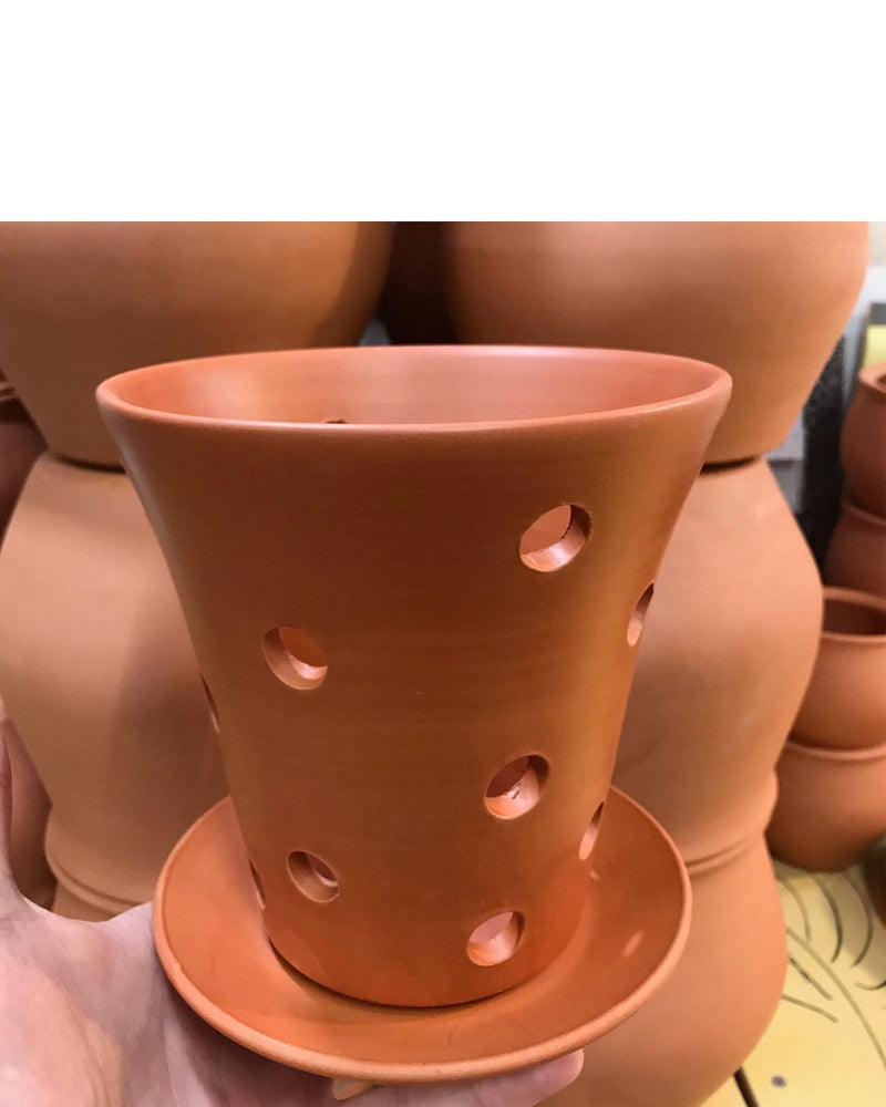 "Orchid Pot With Holes: Scout Soft-as-Silk Terracotta 5.5""H x 5.75""D"