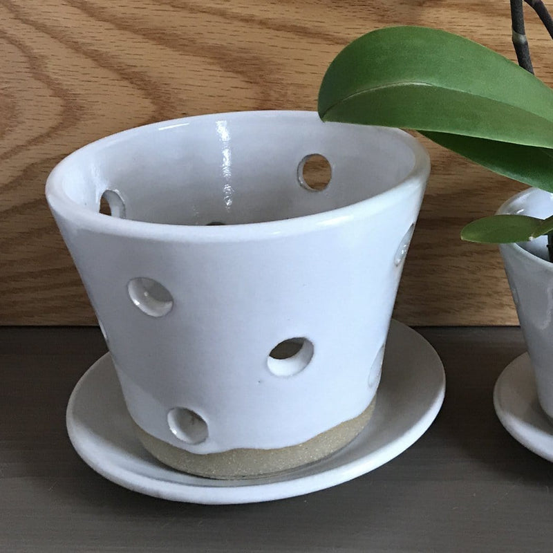 "Orchid Pot With Holes: Valley 3""H x 4.5""D"