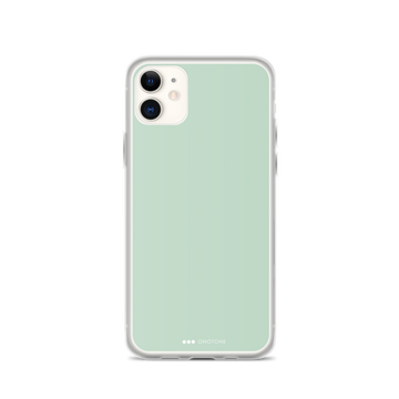Celadon iPhone Case