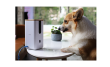Dogness Camera/ Treater - White - T03