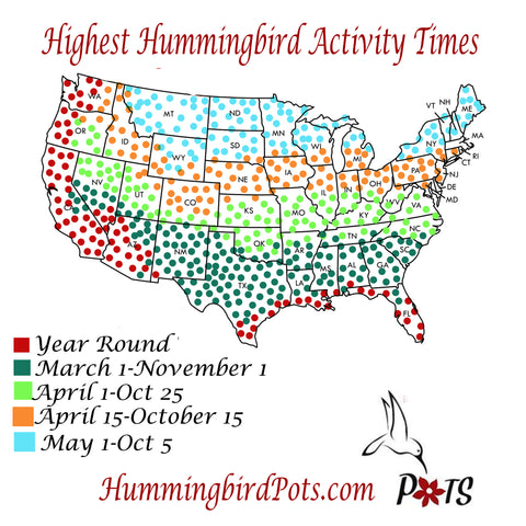 Hummingbird Map Migrations when to hang feeder