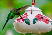 Lot of 12 Hummingbird Feeders - Red Sweet
