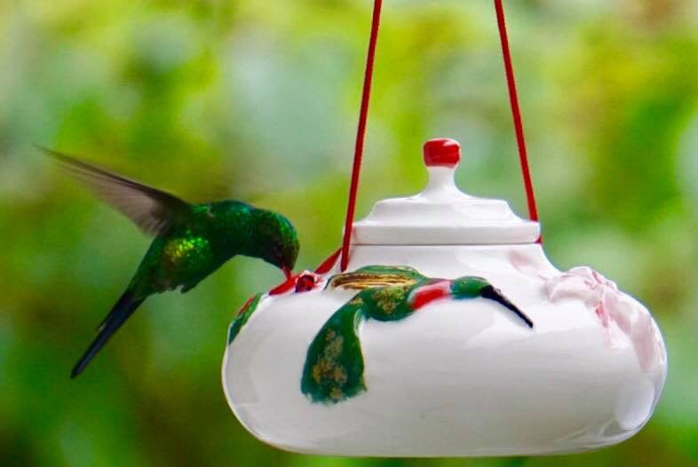 glass par htm bird recycled feeder grounded hummingbird humming p