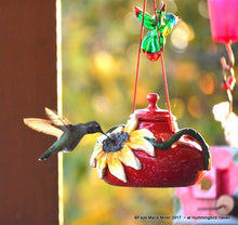 Sunflowers -N- Red Hummingbird Feeder (Art Piece)