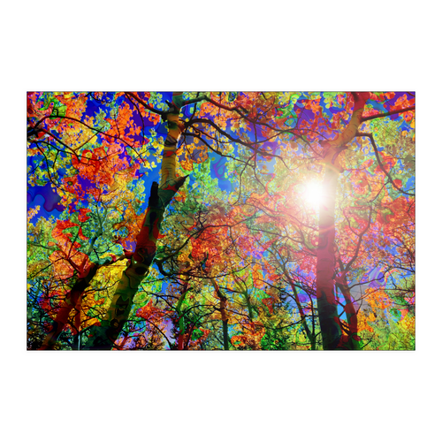 Colorful Canopy Poster - Jud Hayden Art