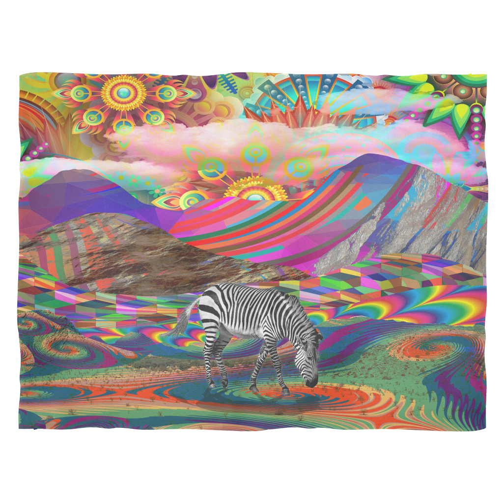 Rainbow Land Blanket - Jud Hayden Art