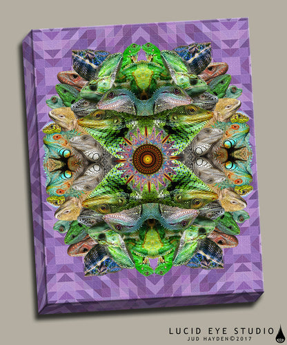 Lizard Mandala Canvas - Jud Hayden Art