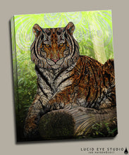 Paisley Tiger Canvas - Jud Hayden Art