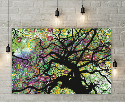 Radial Roots Canvas - Jud Hayden Art