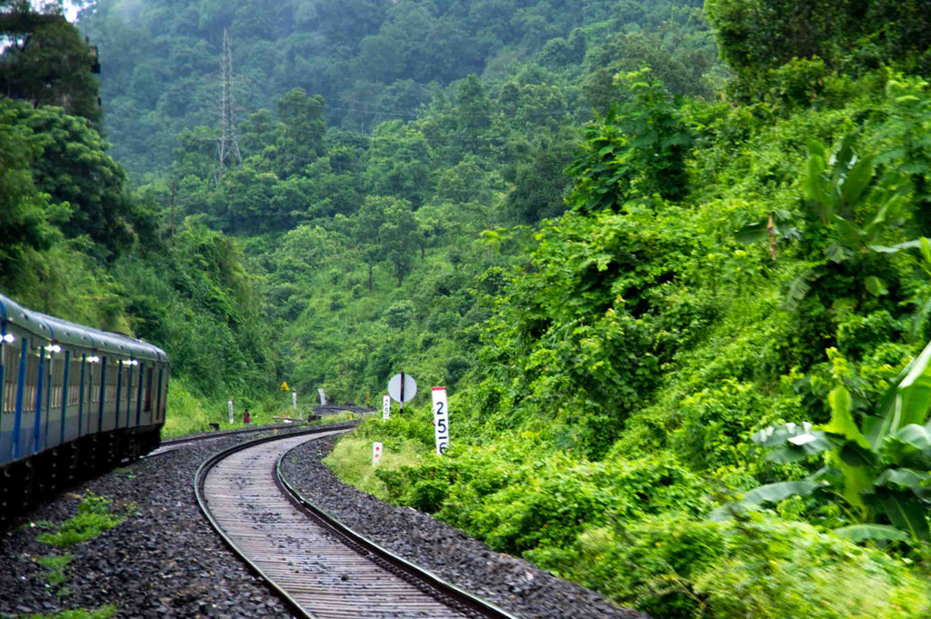 Travel to Assam in August' 2017 - Part-2
