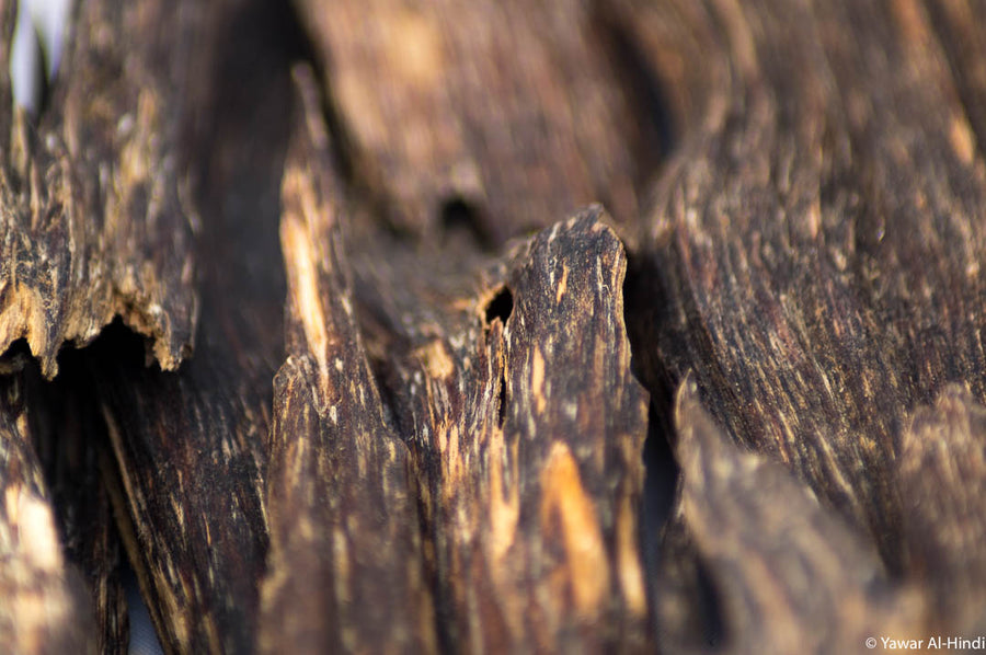 Buy Best Quality Agarwood Chips Online from Assam India