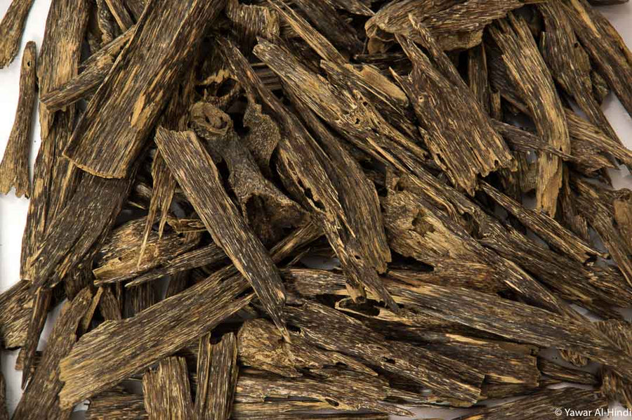 Buy Best Agarwood Chips Online from Nagaland - India