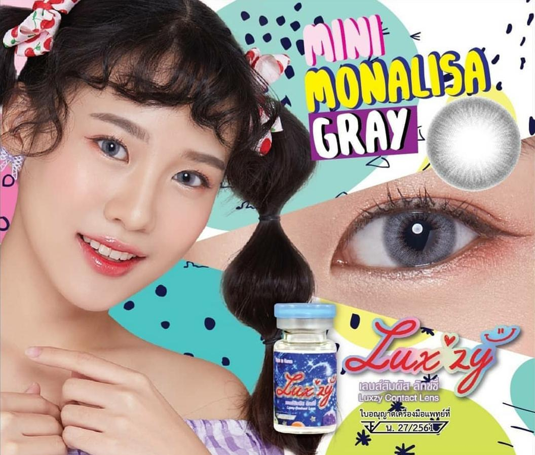 Luxzy Mini Monalisa Gray