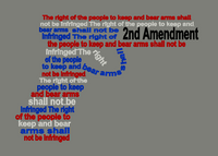 2nd Amendment  9x6