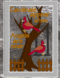 Cardinals Appear When Angels Are Near  5x7