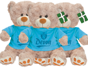Teddy Bear in Devon Jumper