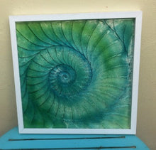 Glass Relief - Frames Ammonite