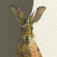 Hare Greetings Cards