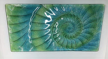 Glass Relief - Ammonite Panels
