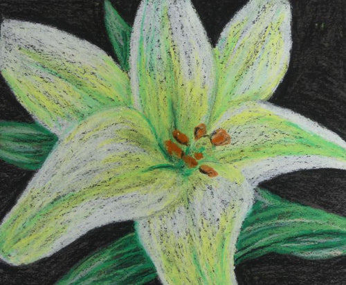 Introduction to Oil Pastels - 4/6
