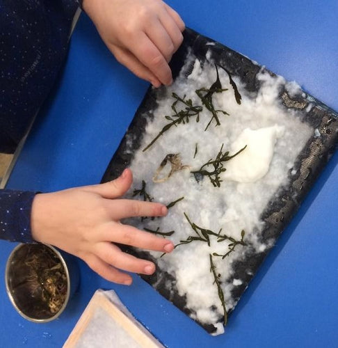 Drop-In Paper Making - 19/2, 8/4 & 27/5
