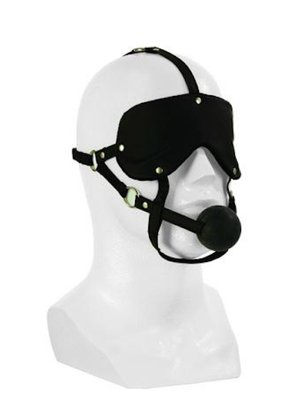 Eye Mask and Ball Gag Headgear