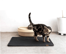 Double Layer Cat Litter Mat with Free Shovel - Dashlux