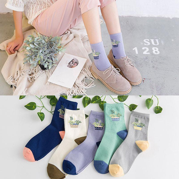 Cute Cactus Plant and Dot Fashion Socks - Dashlux