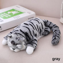 Hilarious and Adorable Electric Laughing and Rolling Cat Toy