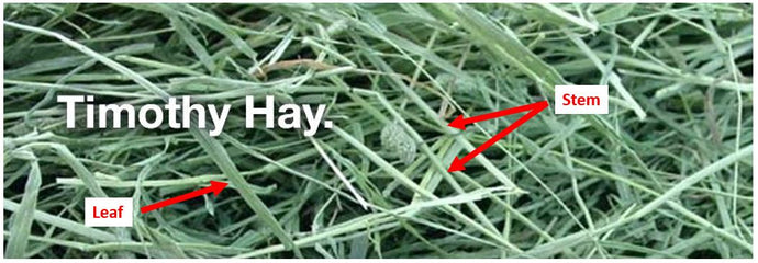 How to hand pull a hay sample