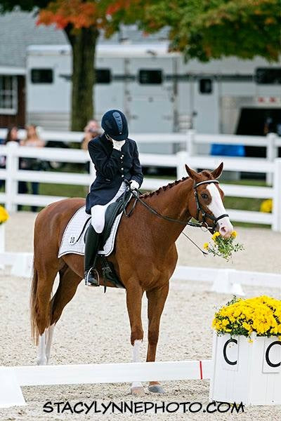 How is your horse's nutrition similar to his dressage training?