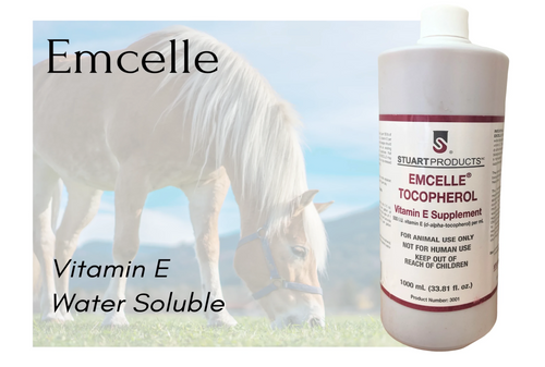 EMCELLE®  Water Dispersible Natural Vitamin E