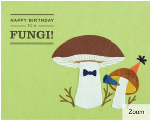 Happy Birthday Fungi