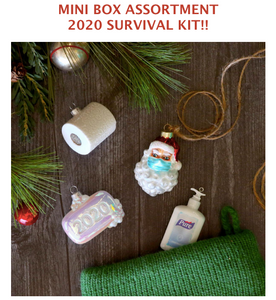 Mini Box Assortment 2020 Survival Kit Ornaments