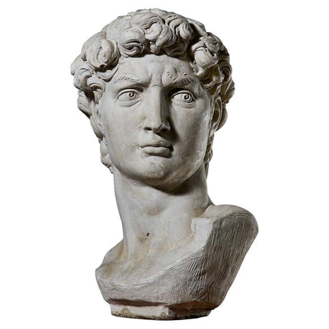 Cast Stone Bust of Michael Angelo's David