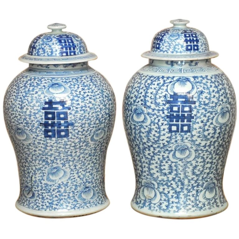 Pair of Chinese Qing Blue and White Porcelain Ginger Jar Vases